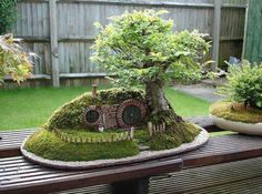 A Hobbit hut bonzai setting...