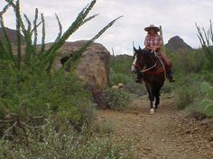 Horseback Riding at the Lazy K Bar Guest Ranch in Tucson, Arizona (2-4 year olds are allowed to ride with a parent/adult for free!)