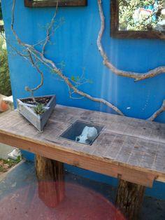 Head of the Table :  Driftwood : Driftwood Pine Top 1800's Shipwreck legs Driftwood mini indigenous garden. White Stinkwood & Haworthia