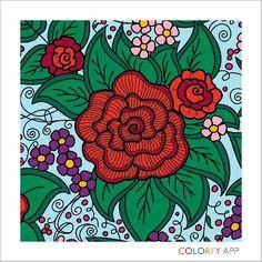 #flowes #daisy #rose