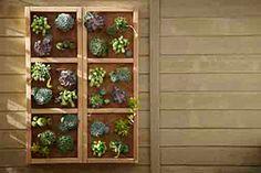 Construisez un jardin vertical