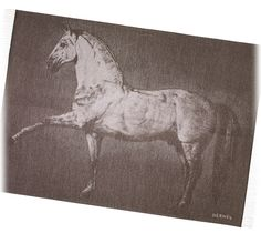 "Cheval Lusitanien Hermes blanket in taupe. 100% cashmere. Measures 60"" x 79"""