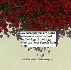 all praise to Allah