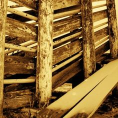 Old cattle chute.