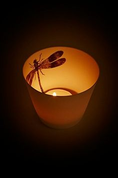 Shop Dragonfly Candle Holder at Urban Outfitters today. We carry all the latest styles, colours and brands for you to choose from right here. Urban Outfitters, Tea Light Holder, Things To Know, Decoration, Candle Holders, Candles, Colours, Ceramics, Animal Decor