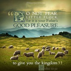 """""""Do not fear, little flock, for it is your Father's good pleasure to give you the kingdom."""" Luke 12:32 