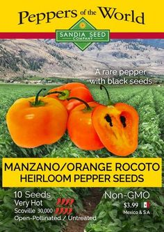 It depends on the growing conditions, variety, it's location, the weather and your zone. In tropical climates without cold winters, peppers can live for many years and grow into what you would call small trees or shrubs. Rocoto and Manzano peppers are the longest lived chile pepper plants.