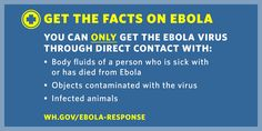 2. The only way a person can get Ebola is through direct contact with the bodily fluids of someone who is already showing symptoms of the disease.