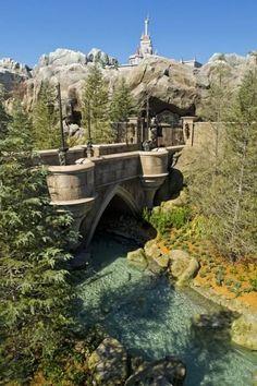 Fantasyland Bridge, Magic Kingdom, Disney World, Orlando, Florida #WDW #Disney #DisneyWorld #WaltDisneyWorld