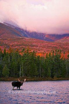 LoriDavis Photography--Mt. Katahdin---breathtaking