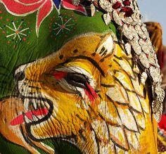 ojo de elefante 1 ( elephant eye 1) | llanosom | Flickr