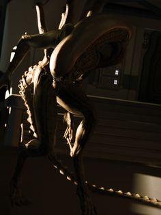 Vampire Masquerade, Alien Isolation, Alien Covenant, Predator Alien, Aliens Movie, Creature Concept, Fantasy Creatures, Sci Fi, Statue