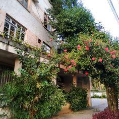 Blumenau Brasil