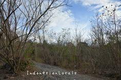 the road to Tuti Adagae hotspring