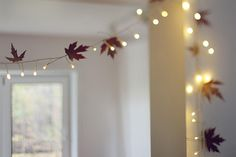 twinkle lights and leaves