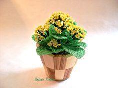 Plante en perles Crassulacée jaune grandeur nature + cache-pot en bois naturel : Accessoires de maison par botanic-perles