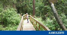 Rotko on Juupajoen tunnetuin luonnonnähtävyys Garden Bridge, Outdoor Structures