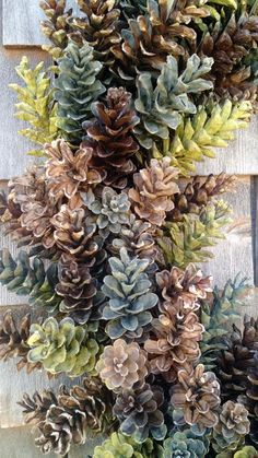 HUGE natural pine cone wreath! Perfect for your xlarge mantle, or large area! This is a giant beauty! I used a espresso brown, tan, olive and sage. Measures over 30 from side to side. I have used fresh Maine pinecones. Each pinecone is wrapped double around a sturdy metal frame. I have used fresh Maine pinecones. Each pinecone is wrapped double around a sturdy metal frame. Some pinecone wreaths on the market are hot glued or made very flimsy. I use thick high quality wire. Best in a…