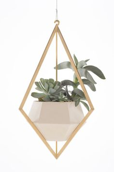 Tetra Planter by Light + Ladder | eBay