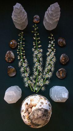 Ocean Jasper, Selenite, Bumblebee Jasper and Laurus Nobilis flowers Crystal Grid by Woodlights Woudlicht