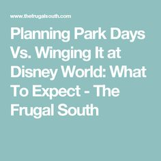Planning Park Days Vs. Winging It at Disney World: What To Expect - The Frugal South