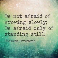 Be not afraid of growing slowly, be afraid of standing still..chinese proverb