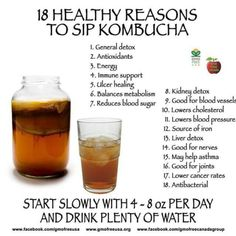 gut health 7 Reasons Why You Should Drink Kombucha for Good Gut Health Here is some great information by Dr. Axe and other researchs on the benefits of Kombucha, the benefits of live probiotics and enzymes a Kombucha Health Benefits, Juicing Benefits, Health Cleanse, Gut Health, Health Tips, Health Facts, Health Care, Recipes, Tibicos