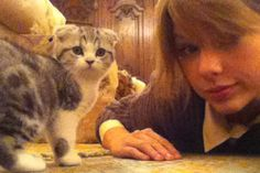 Taylor Swift + her kitten Meredith
