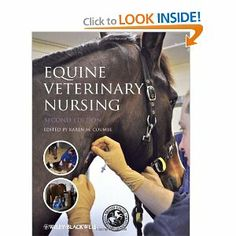 how to become an equine vet technician