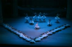 A grouping from the fourth scene of Rudolf Nureyev�s production of Swan Lake for the Vienna State Opera Ballet, Vienna, 2004