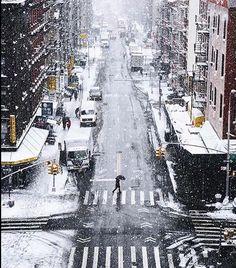 Winter Wonderland : NYC, New York, New York