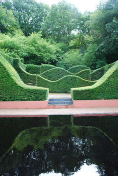 A lovely little garden with waved hedges