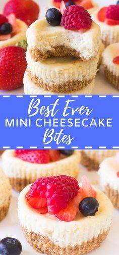 are the best ever mini cheesecake bites that are baked in a cupcake tin! They are so easy and delicious!These are the best ever mini cheesecake bites that are baked in a cupcake tin! They are so easy and delicious! Cheesecake Frio, Mini Cheesecake Bites, Best Cheesecake, Easy Cheesecake Recipes, Mini Cheesecakes, Healthy Dessert Recipes, Health Desserts, Easy Desserts, Cookie Recipes