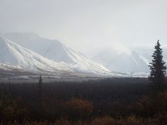 On April 25th, !992, Chris makes a difficult hike up to Fairbanks, but finally makes it to Alaska