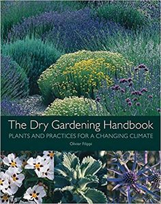 Booktopia has The Dry Gardening Handbook, Plants and Practices for a Changing Climate by Olivier Filippi. Buy a discounted Hardcover of The Dry Gardening Handbook online from Australia's leading online bookstore. Garden Landscape Design, Garden Landscaping, Mediterranean Plants, Dry Garden, Drought Tolerant Plants, Natural Garden, South Of France, Habitats, Gardening