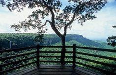 Parque Nacional de Ubajara - Ceará