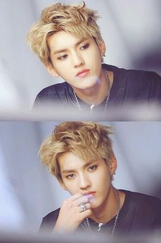 Woo YiFan (Kris) of EXO (yes I know woo is not his surname but it sounds the same as Wu so I put him in this family)