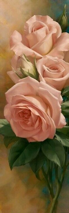 Rosas peach.