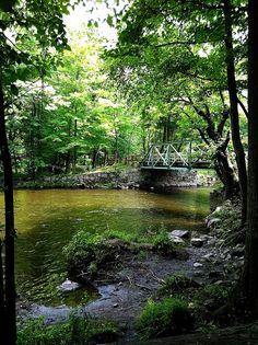 Ramapo Reservation - New Jersey Trails | AllTrails.com