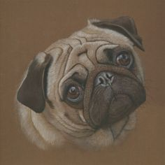 Pug portrait notecard, set of five blank inside
