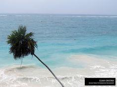 10 dicas para fazer aquela foto incrível e perfeita de paisagem a nível de um profissional.  www.conexaofotografica.com.br/10-dicas-fotografar-paisagens