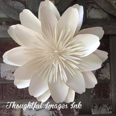 Large Paper Flower Wall Decor/Backdrop by thoughtfulimagesink