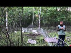 Using Goats to Graze Brush and Invasive Plants - YouTube