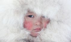 Nenya Vanuito, a young Nenets girl, wearing a traditional hat with fur trim at a winter camp near Tambey. Yamal Peninsula, Western Siberia, ...