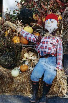 Make A Scarecrow, Scarecrow Face, Halloween Scarecrow, Holidays Halloween, Halloween Crafts, Scarecrow Ideas, Halloween Stuff, Halloween Ideas, Halloween Party