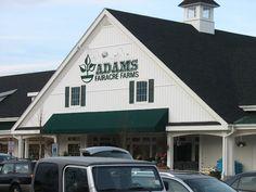 Adams Fairacre Farms in Wappinger Falls, NY.