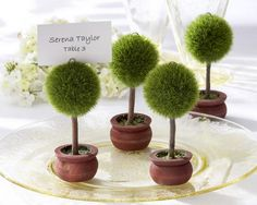 Topiary place card holders are unique favors for a garden party or spring wedding. These little green trees from Kate Aspen are great photo holders too. Unique Wedding Favors, Unique Weddings, Wedding Decorations, Table Decorations, Wedding Souvenir, Topiary Centerpieces, Wedding Ideas, Wedding Centerpieces, Decoration Party