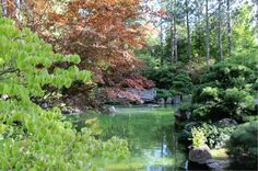 Nishinomiya-Tsutakawa Japanese Gardens Spokane