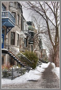 Memories of Montreal.so dear to my heart. This is where we lived when we first emigrated after WWII. I was my sister was Our aunt and our grandma were in Montreal. Mont Royal Montreal, Quebec Montreal, Montreal Ville, Quebec City, Great Places, Places To See, Beautiful Places, O Canada, Canada Travel