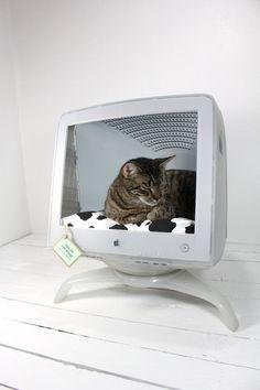 Seu melhor amigo vai amar! #Upcycle de computador em casa para bicho de estimação! www.eCycle.com.br Sua pegada mais leve.